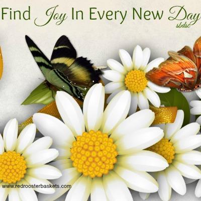 findjoy